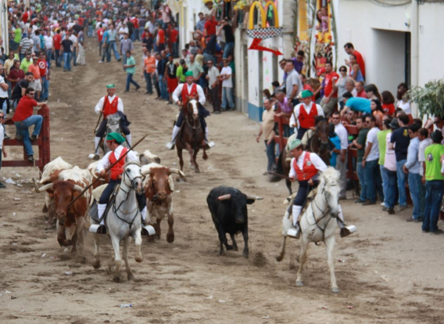 Feira de Maio de Azambuja