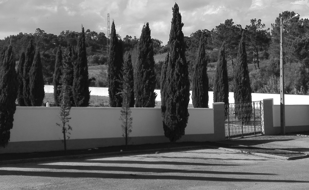 Cemitério Novo de Azambuja